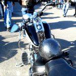 bardi - 04-09_19-bartolo_de_bard.jpg