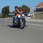 bardi - 04-09_69-bartolo_de_bard.jpg